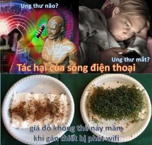 dtdt_2