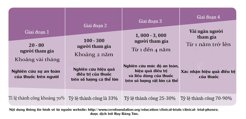 Hình 2: Quy trình thử nghiệm lâm sàng thuốc trên người
