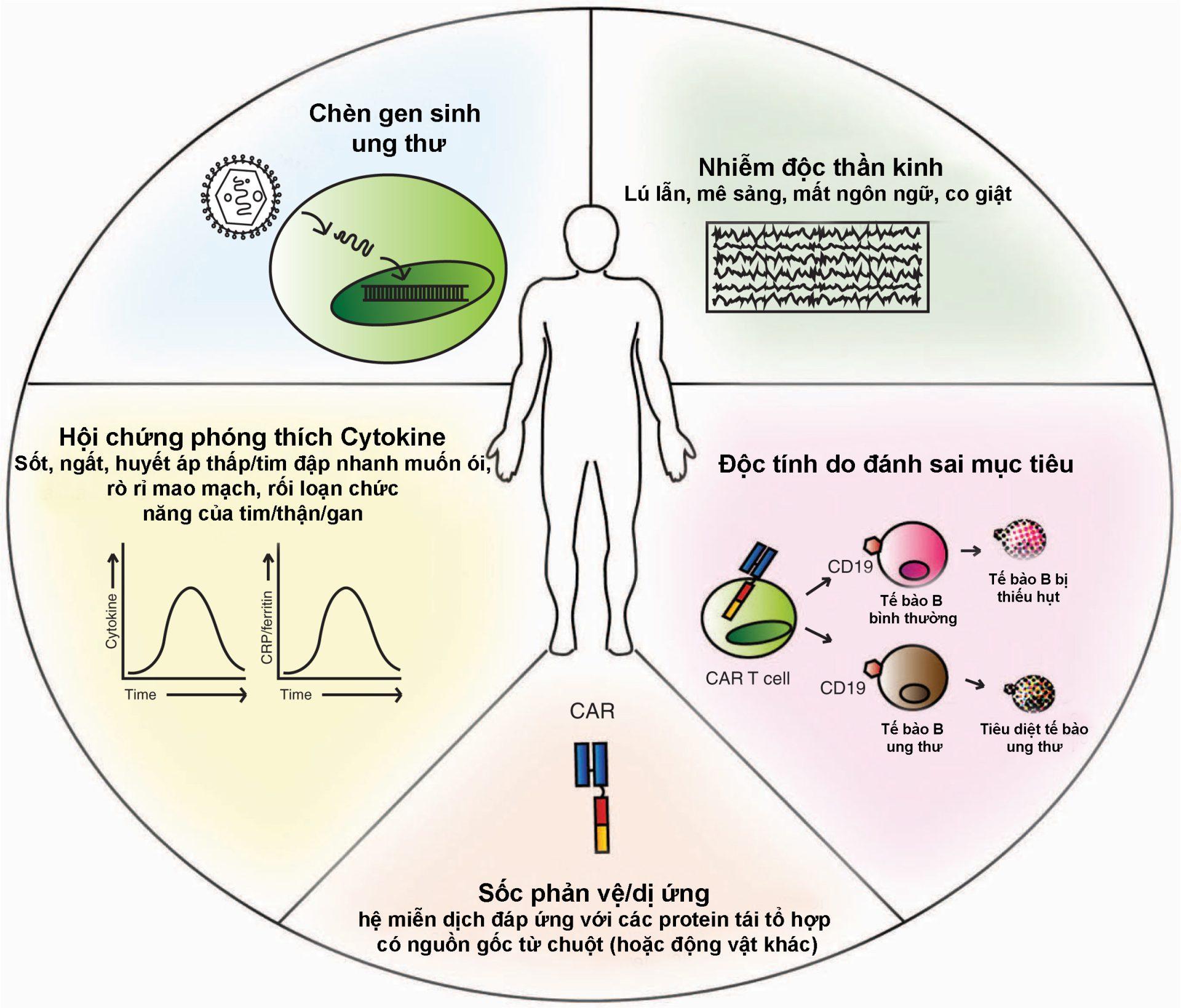 Tác dụng phụ của điều trị ung thư bằng phương pháp miễn dịch