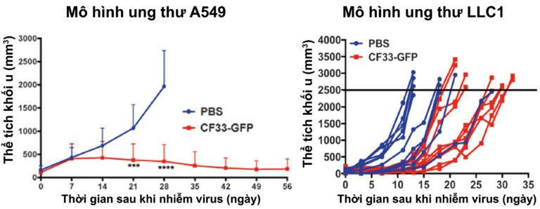điều trị ung thư bằng virus
